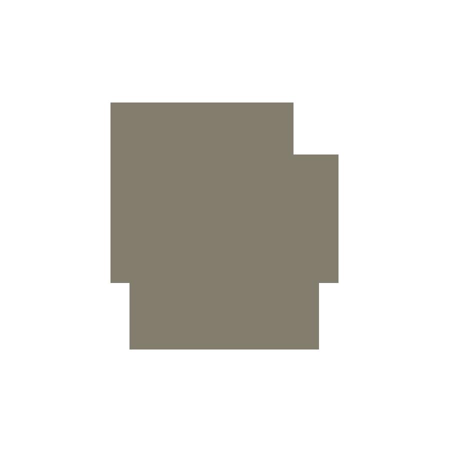 Plaque de box chevaux 240 x 180 mm or brossé